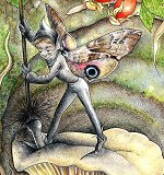 Sweep Copyright© 2005 Fairies World