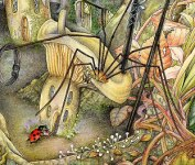 Anansi Copyright© 2005 Fairies World