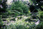 A visit to Monet's House in France