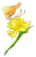Petal Daffodil, Copyright© 2001 Fairies World