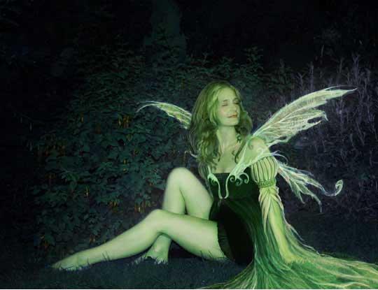Fairies World The Absinthe Green Fairy