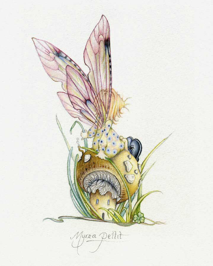 Recent fairy art by myrea pettit for Fairy on a mushroom drawing